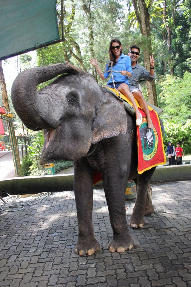 16 - At a Zoo in Indonesia